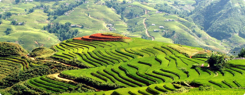 West-North-Areas_-Sapa-and-Terraced-Fields_1.jpg